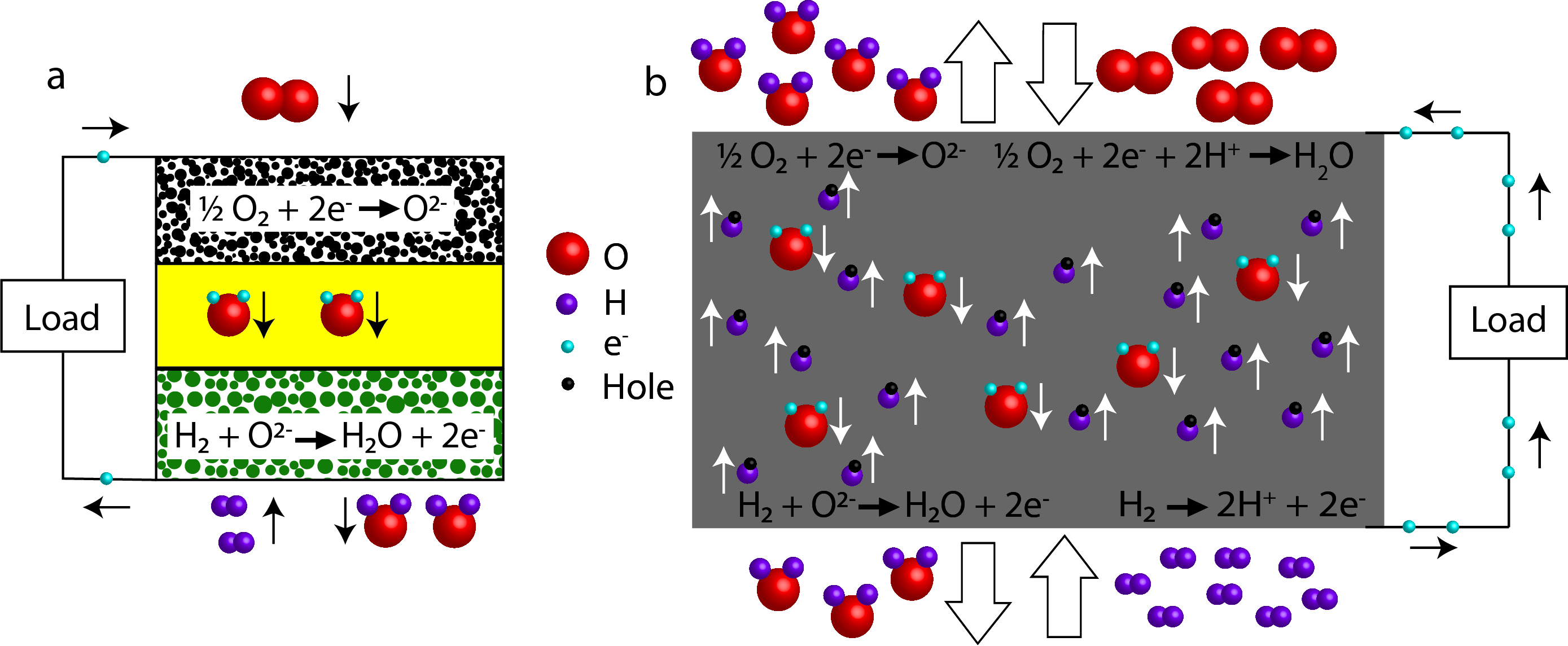 Carbonate dual-phase improves the ionic conductivity and