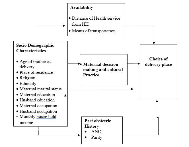 Choice of childbirth place among childbearing age women